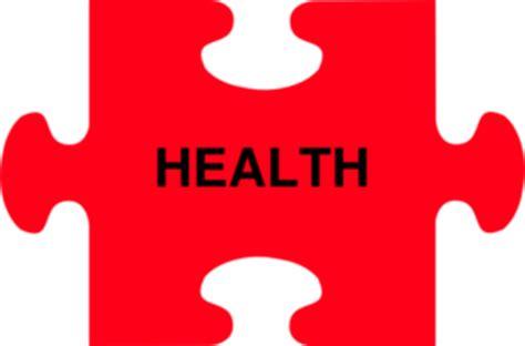 Health care in usa essay